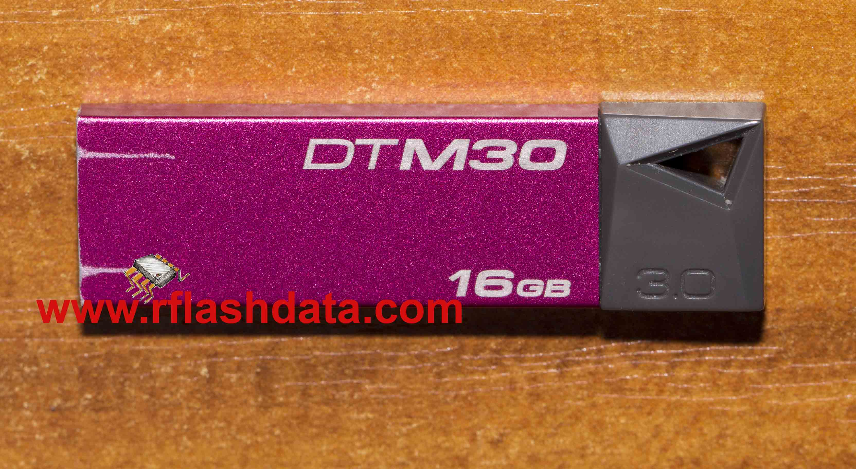KIngston DTM30